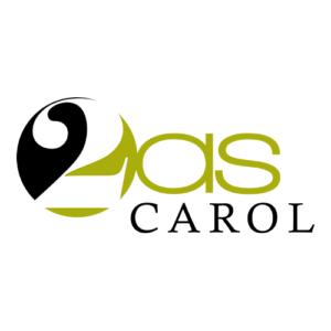 Création de logo pour 2AS Carol
